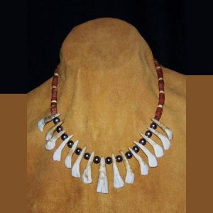Native American Buffalo Tooth Necklace